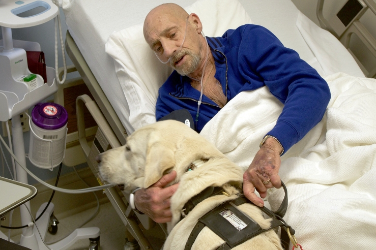 Dog Keeps Cancer Patient Company